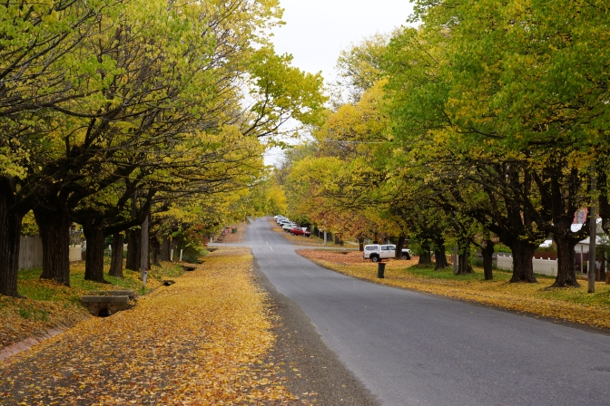 Beechworth, VIC, Australia