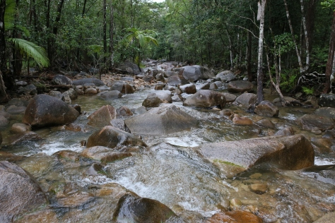 Creek Crossing Finch Hatton