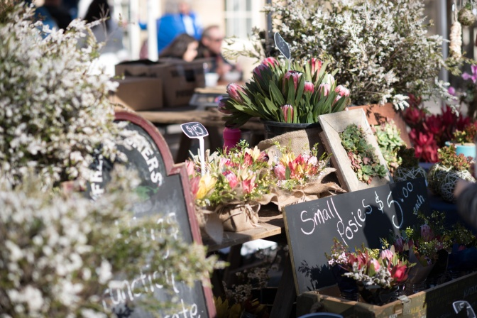 Salamanca Markets – Hobart